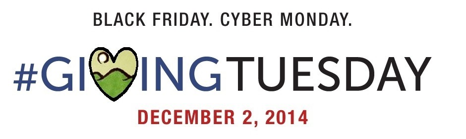 GivingTuesday-full Banner-wCGFlogo(2)