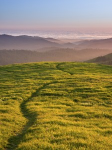 Russian Ridge-Kyrod Myatt