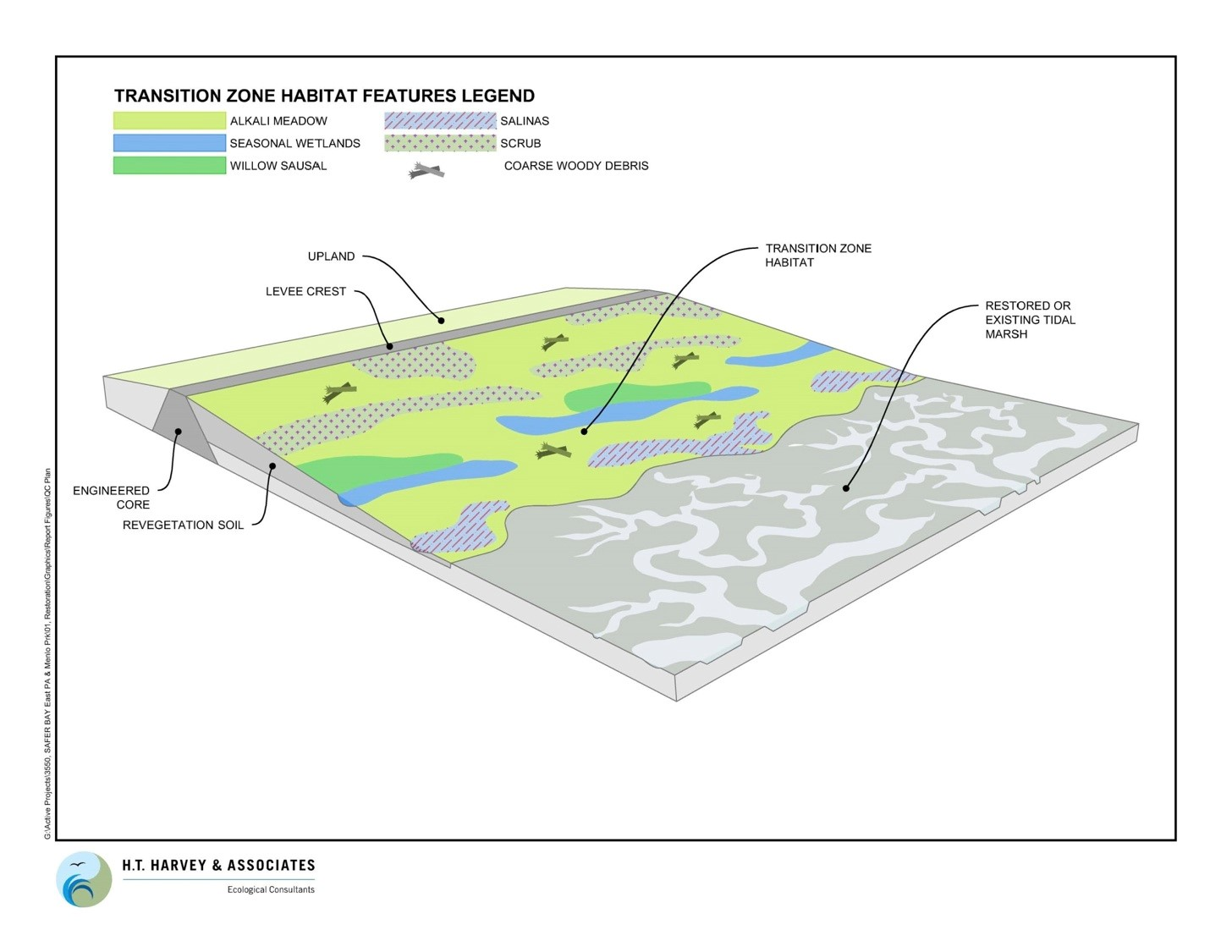 """""""Living Levees"""": Protecting Against Sea Level Rise by Restoring Wetlands"""
