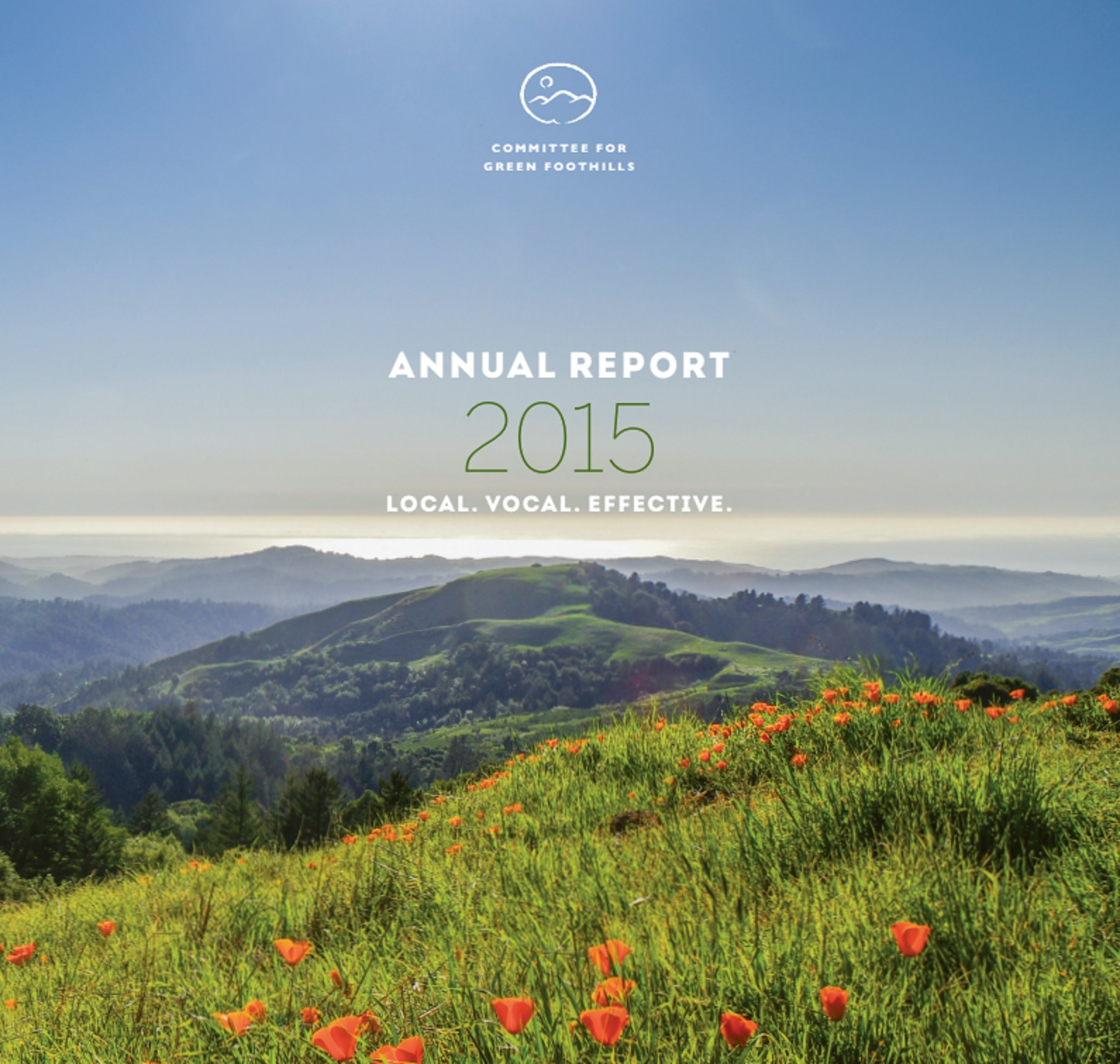 Introducing Our First-Ever Annual Report