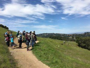 Edgewood Park Hike and Picnic @ Edgewood County Park | Redwood City | California | United States