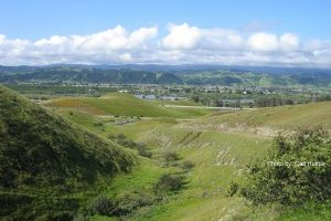 coyote-valley-from-coyote-ridge-2