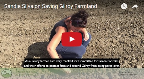 Sandie Silva on Saving Gilroy Farmland