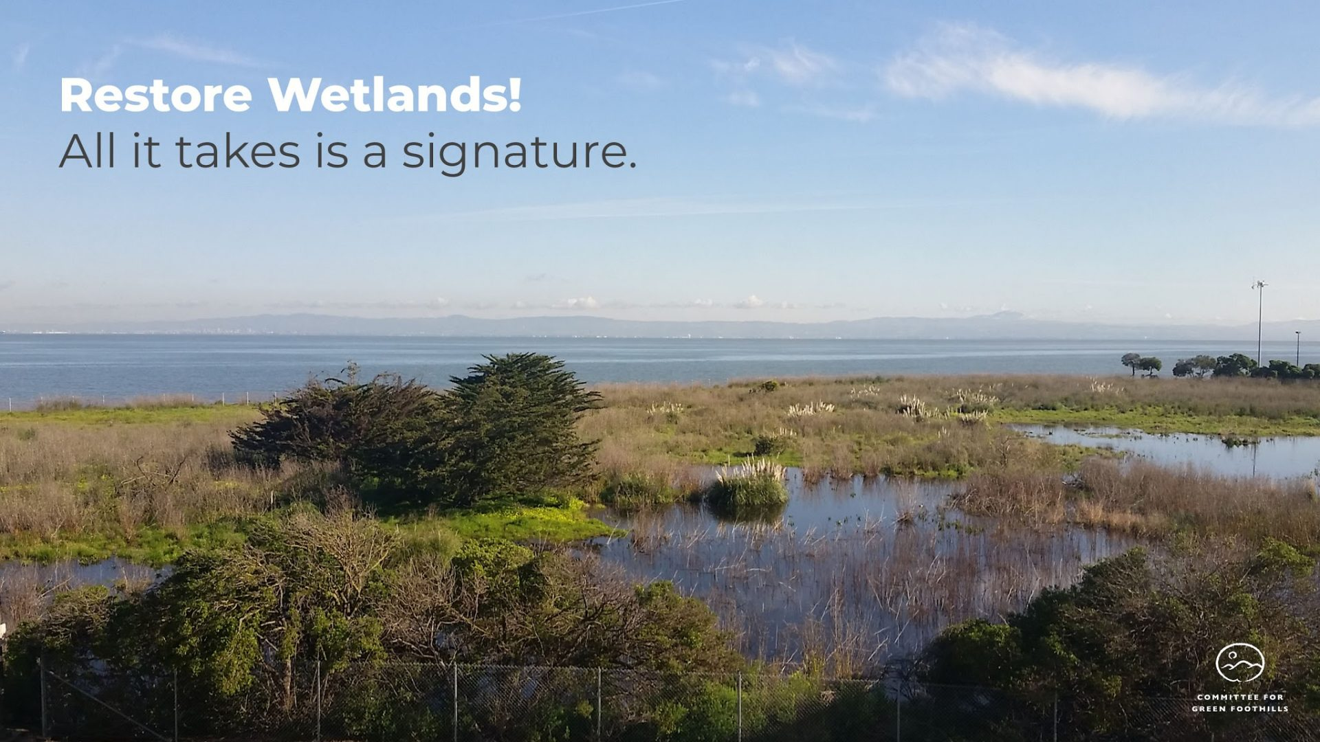 Speak Up for Wetlands & Access along the Bay