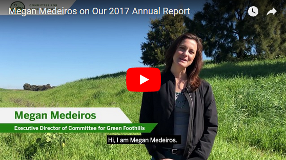 Megan Medeiros On Our 2017 Annual Report