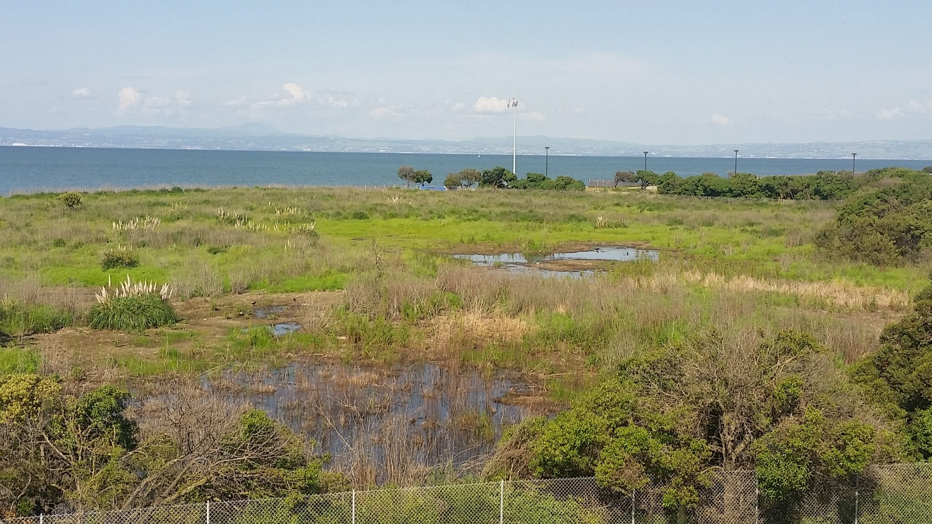 Rally to State Lands Commission Hearing for Burlingame Bayfront