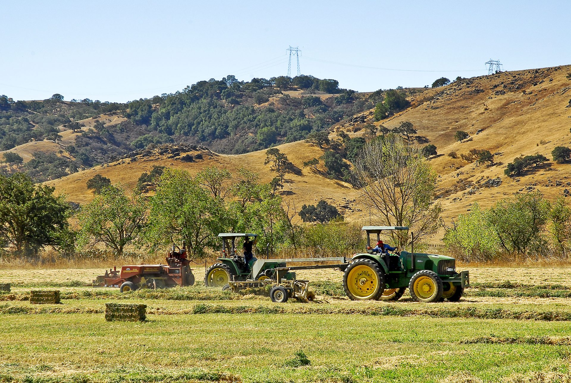 Supervisors Request Options to Fund Farmland Preservation