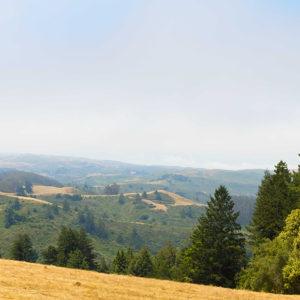 Nature's Inspiration Venue: Wickett Ranch