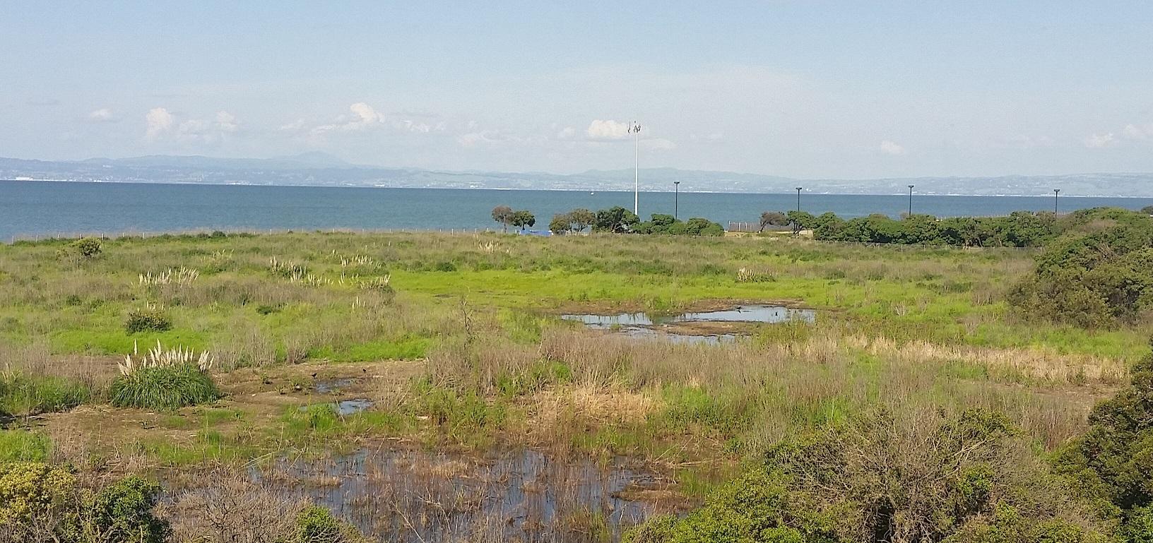 State Lands Commission Approves Burlingame Shoreline Park!