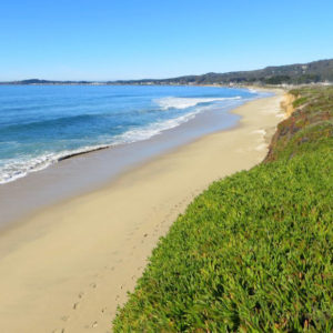 Half Moon Bay Review: Dunes Beach is Treasure Deserving Protection