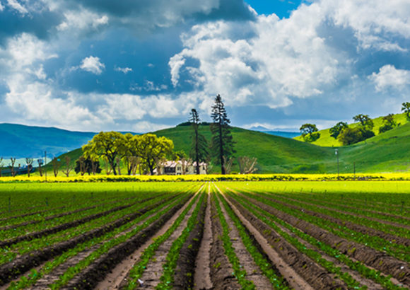 Ask Supervisors to Uphold $5 Million Promise for Farmland Preservation