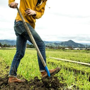 Supervisors Approve Climate Smart Farming Pilot Program