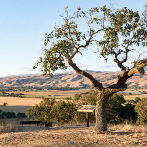 Urgent: Tell ABAG Not to Threaten Coyote Valley and County's Rural Lands