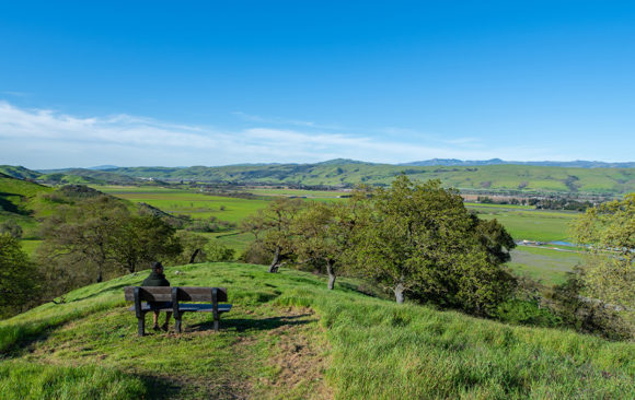 A New Vision For Coyote Valley