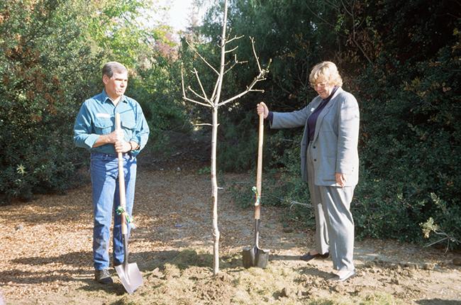 Rod Diridon Sr. planting a tree