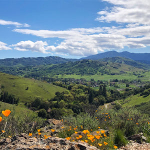 Ask County Supervisors To Support Coyote Valley Climate Change Overlay Zone